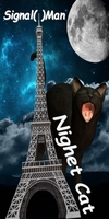 Signal(0)Man - Night Cat